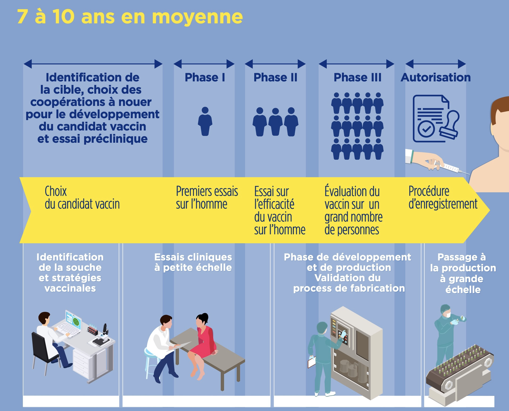 Temps développement vaccin